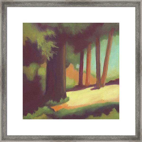 Berkeley Codornices Park Framed Print