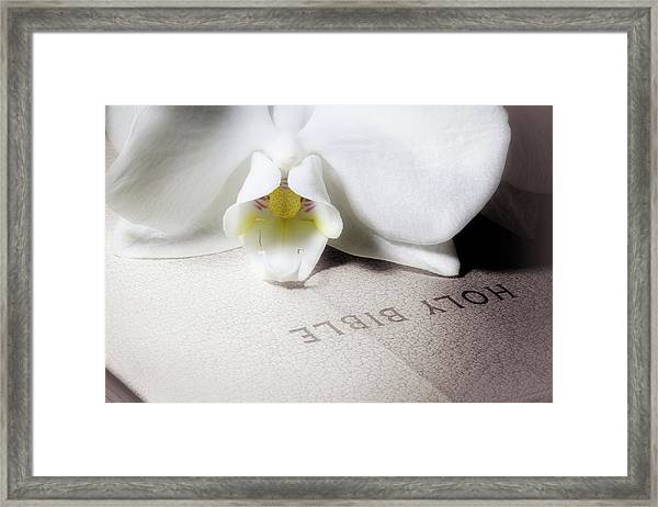 Bible With White Orchid Framed Print
