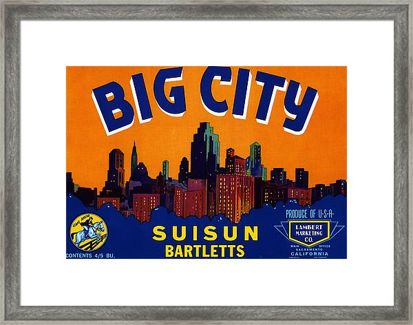 Big City Skyline Framed Print