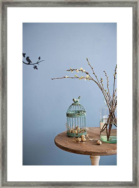 Bird Cage Framed Print