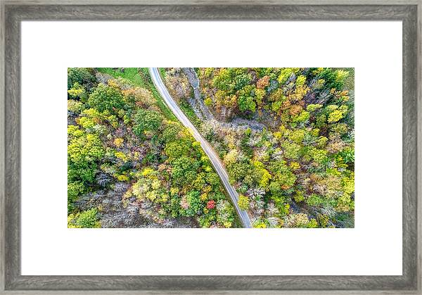 Bird Eye View Framed Print