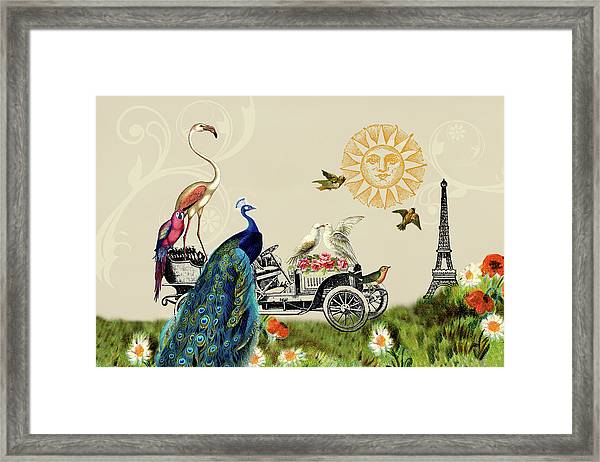 Birds Of A Feather In Paris, France Framed Print