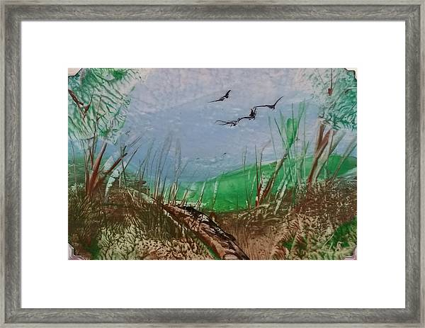 Birds Over Grassland Framed Print