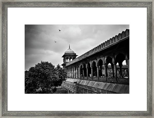 Framed Print featuring the photograph Birds Over The Jama Masjid by Whitney Goodey