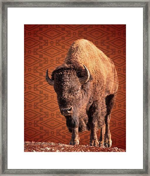 Bison Blanket Framed Print