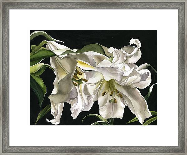 Black And White With Green Framed Print