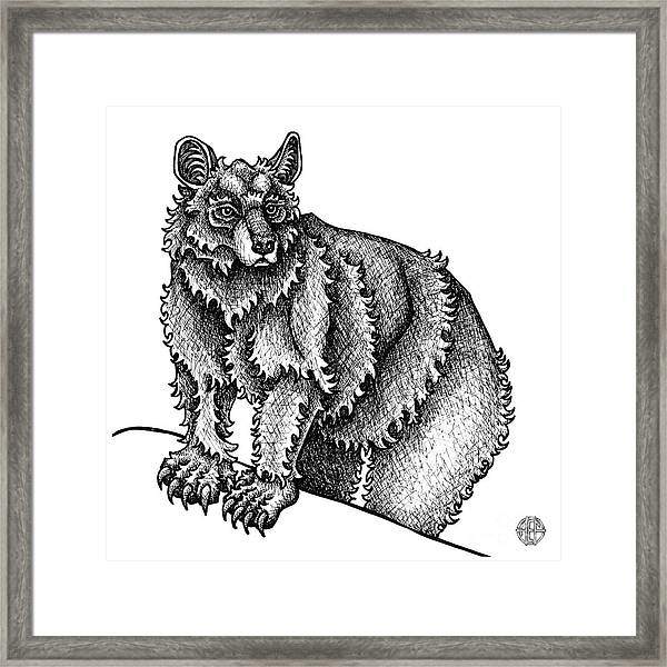 Framed Print featuring the drawing Black Bear by Amy E Fraser