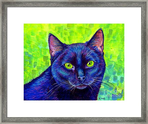 Black Cat With Chartreuse Eyes Framed Print