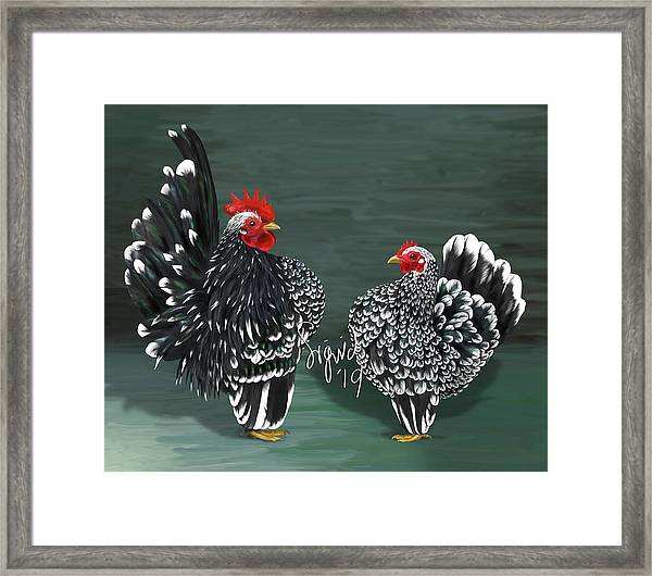 Black Mottled Serama Pair Framed Print