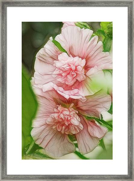 Blossoming Hollyhock Flowers In A Framed Print by Maria Mosolova
