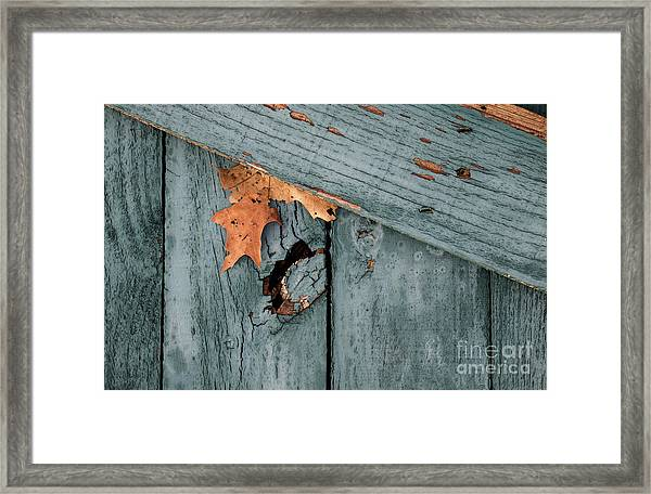 Blue Fence Framed Print