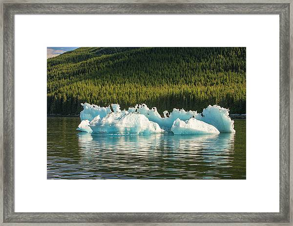 Blue Icebergs With Herring Gulls, Tracy Framed Print by Stuart Westmorland
