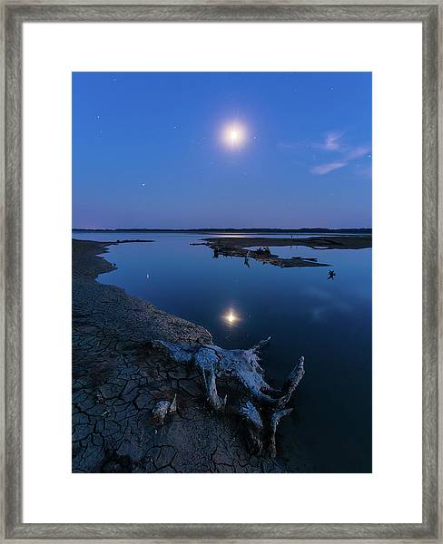 Blue Moonlight Framed Print
