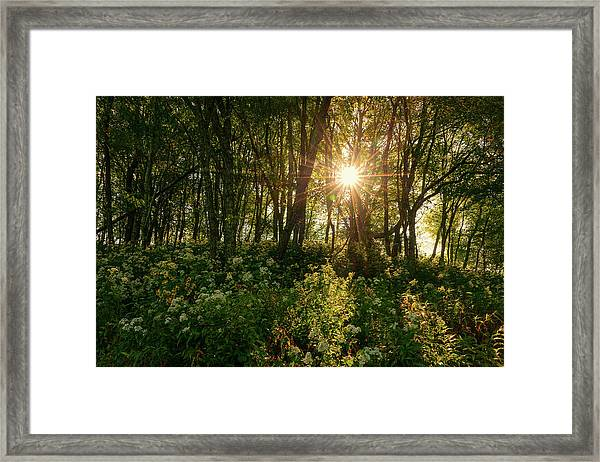 Blue Ridge Parkway - Last Of Summers Light, North Carolina Framed Print