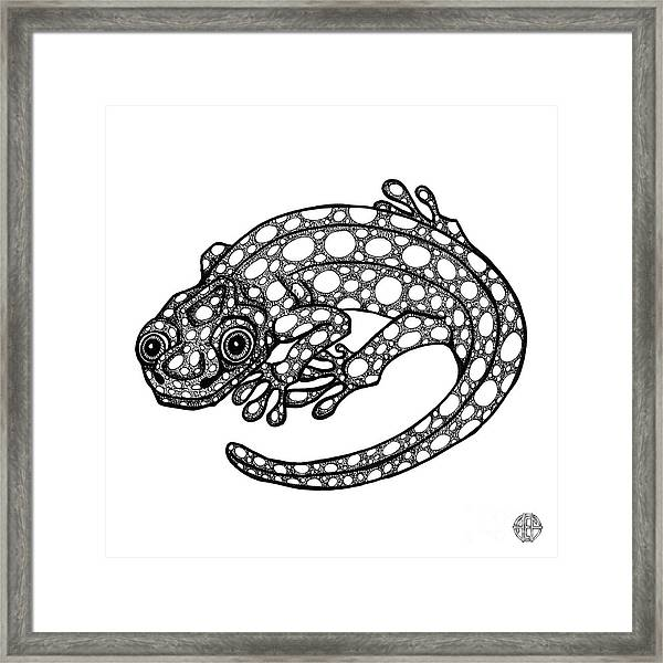 Framed Print featuring the drawing Blue Spotted Salamander by Amy E Fraser