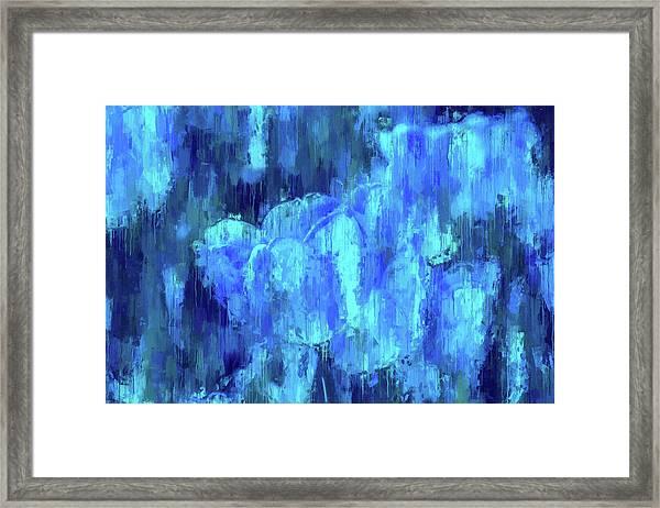 Blue Tulips On A Rainy Day Framed Print