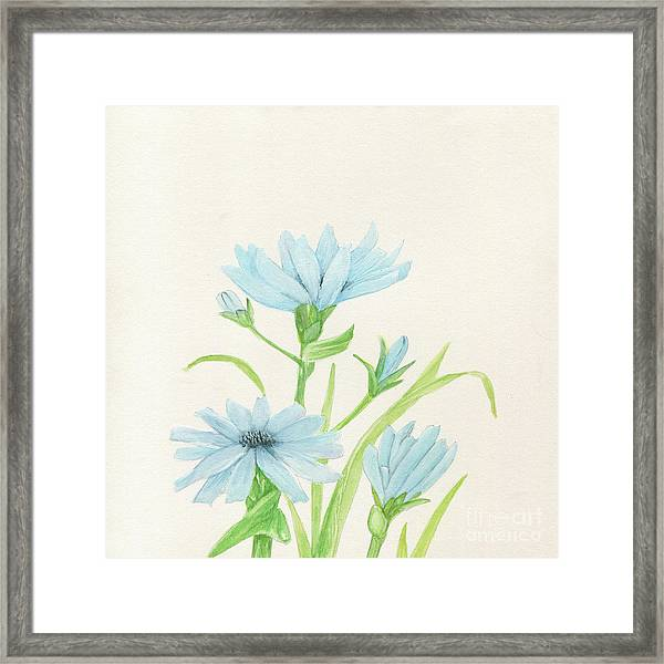 Blue Wildflowers Watercolor Framed Print
