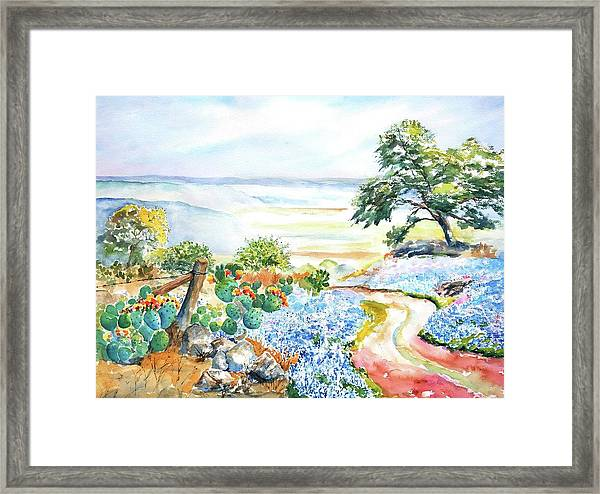 Bluebonnets - Texas Hill Country In Spring Framed Print