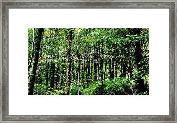 Blueridgemts_4047_18 Framed Print