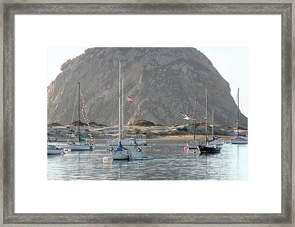 Boats In Morro Bay Framed Print