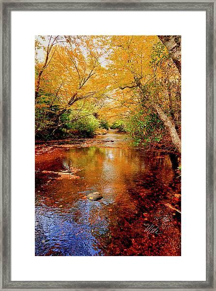 Boone Fork Stream Framed Print