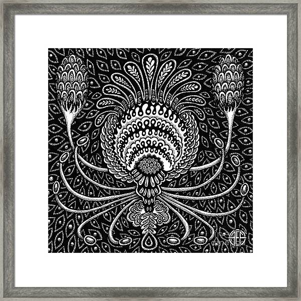 Framed Print featuring the drawing Botanical Bioform 8 by Amy E Fraser