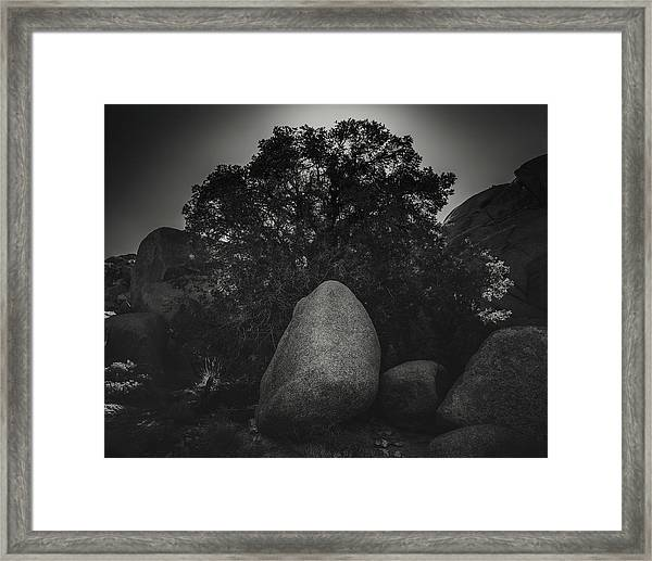 Boulder With Tree Framed Print by Joseph Smith