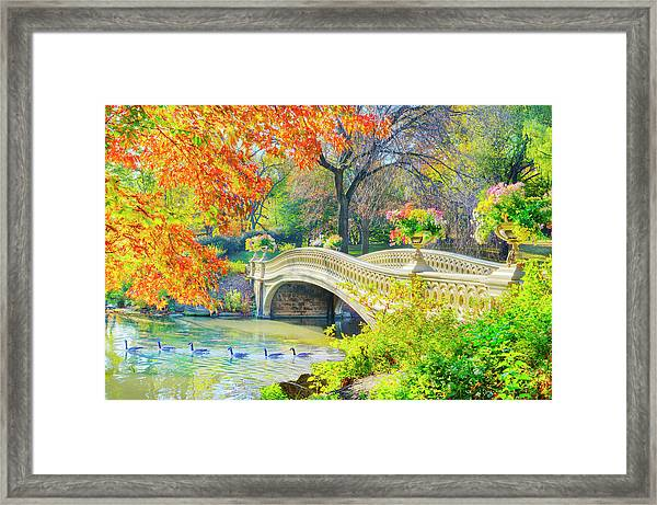 Bow Bridge, Central Park, In Autumn Framed Print by Mitchell Funk