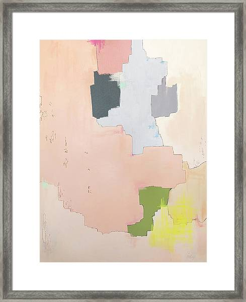 Brdr01 Framed Print