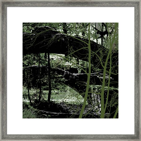 Bridge Vi Framed Print