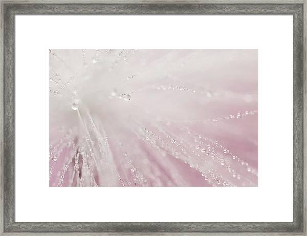 Bright Light Framed Print