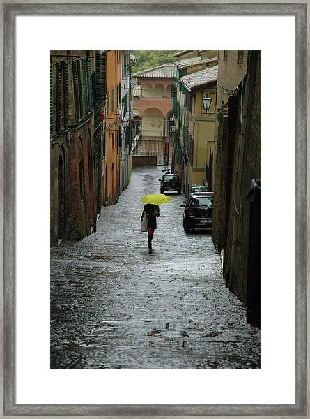 Bright Spot In The Rain Framed Print