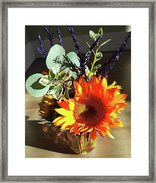Bright Sunflower Autumn Gift Framed Print