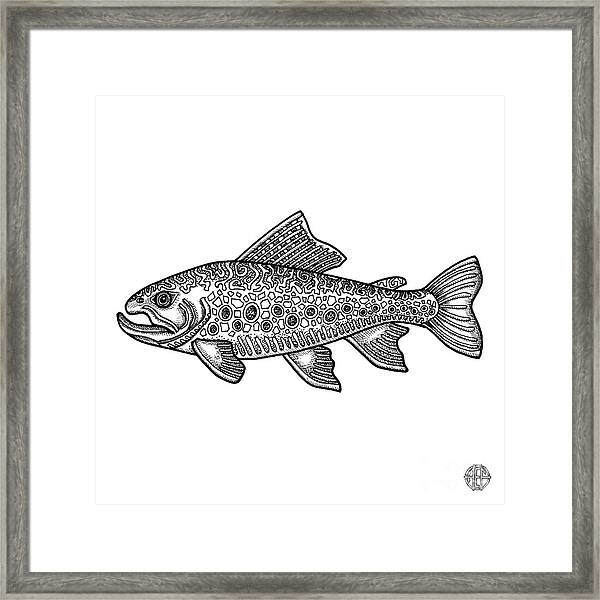 Framed Print featuring the drawing Brook Trout by Amy E Fraser