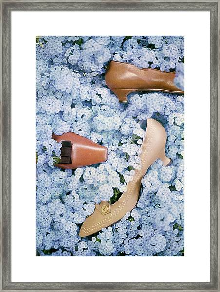 Brown Shoes In Bed Of Blue Flowers Framed Print by Gordon Parks