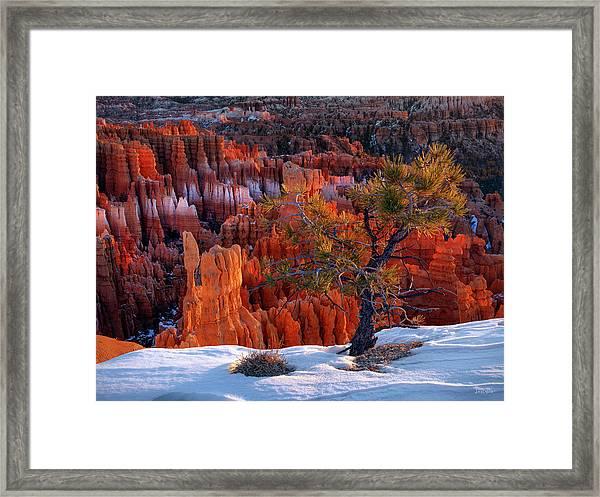 Bryce Canyon Winter Light Framed Print