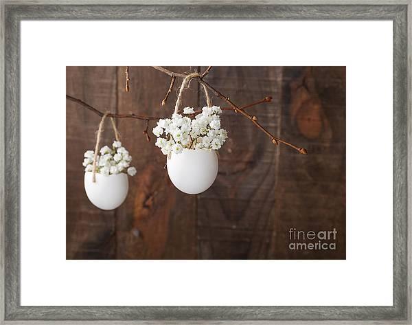Bunch Of Of White Babys Breath Flowers Framed Print