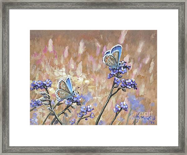 Butterfly Meadow - Part 3 Framed Print