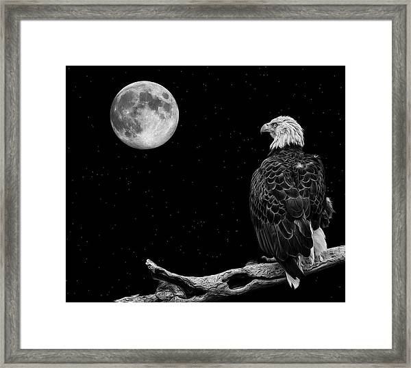 By The Light Of The Moon Framed Print