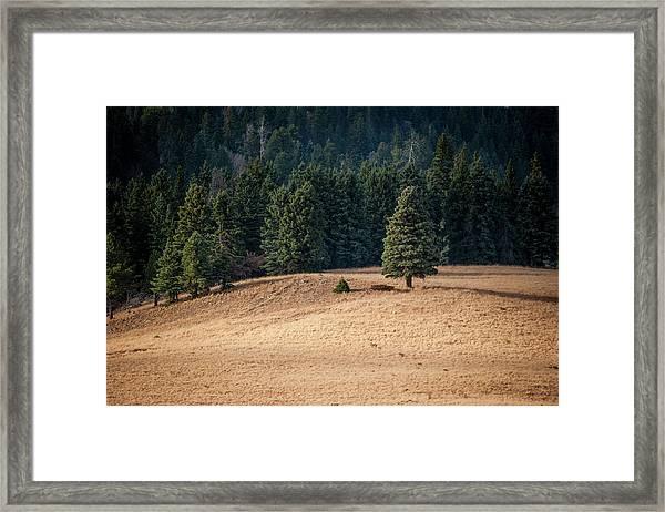 Caldera Edge Framed Print