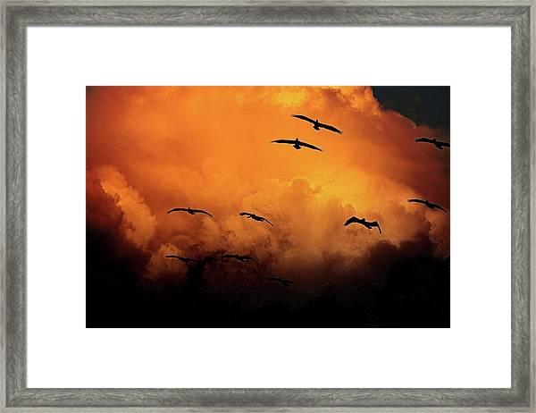 California Exodus Framed Print