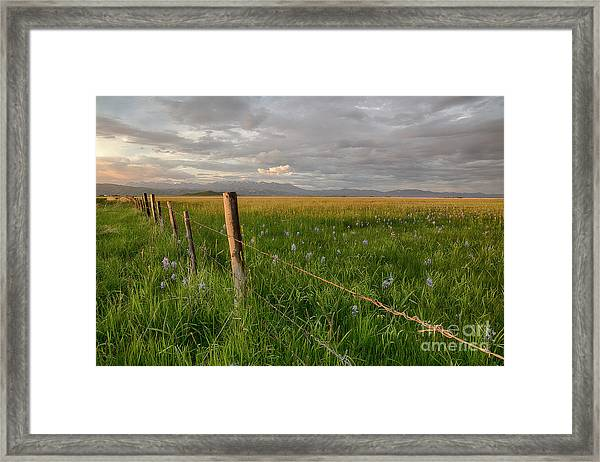 Camas Prairie Light Framed Print