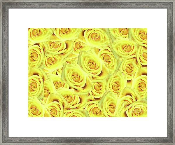 Candlelight Roses Framed Print
