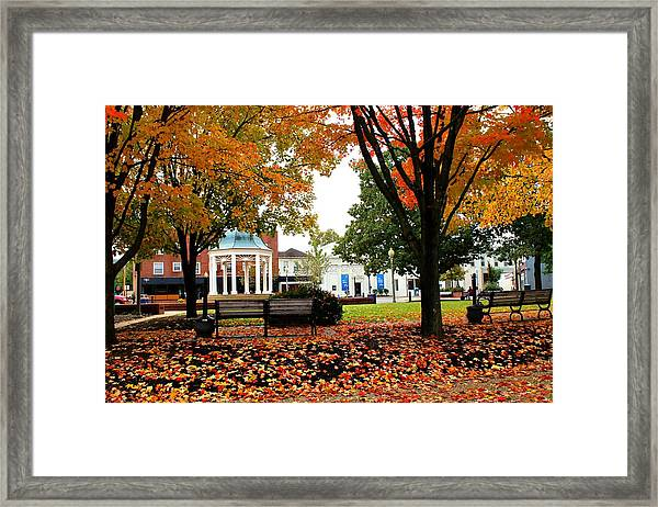 Framed Print featuring the photograph Candy Corn by Candice Trimble