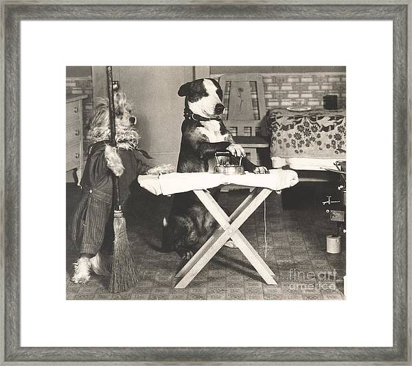 Canine Chores Framed Print by Everett Collection