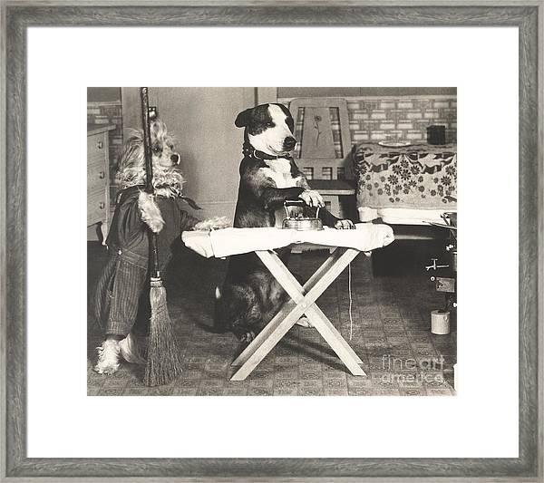 Canine Chores Framed Print