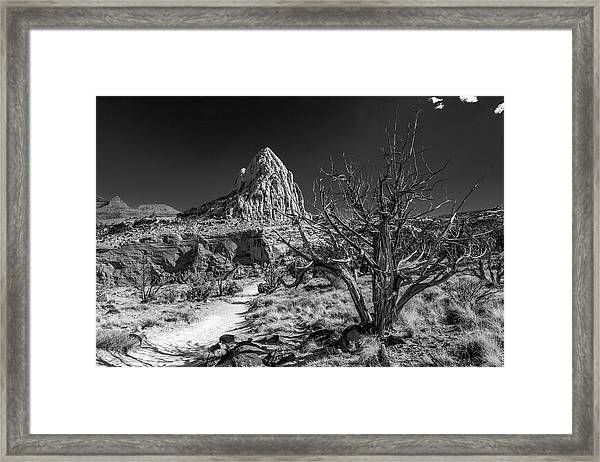 Capitol Reef Np - But, It's A Dry Heat... Framed Print