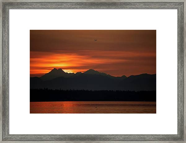 Cardboard Mountains Framed Print by Tom Trimbath