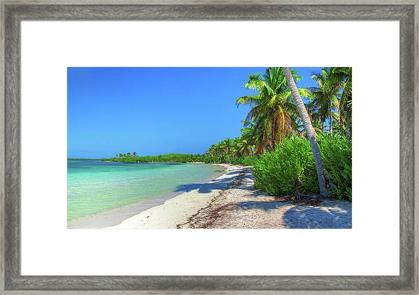 Caribbean Palm Beach Framed Print