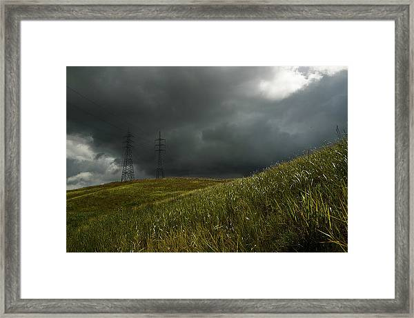Caroni Grasslands Framed Print